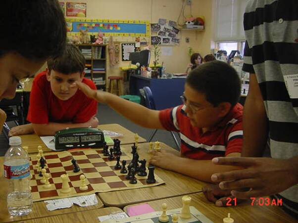 Learn chess online openings tactics & more